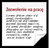Zezwolenie na Pracę w Polsce (typ A, B, C, D, E)